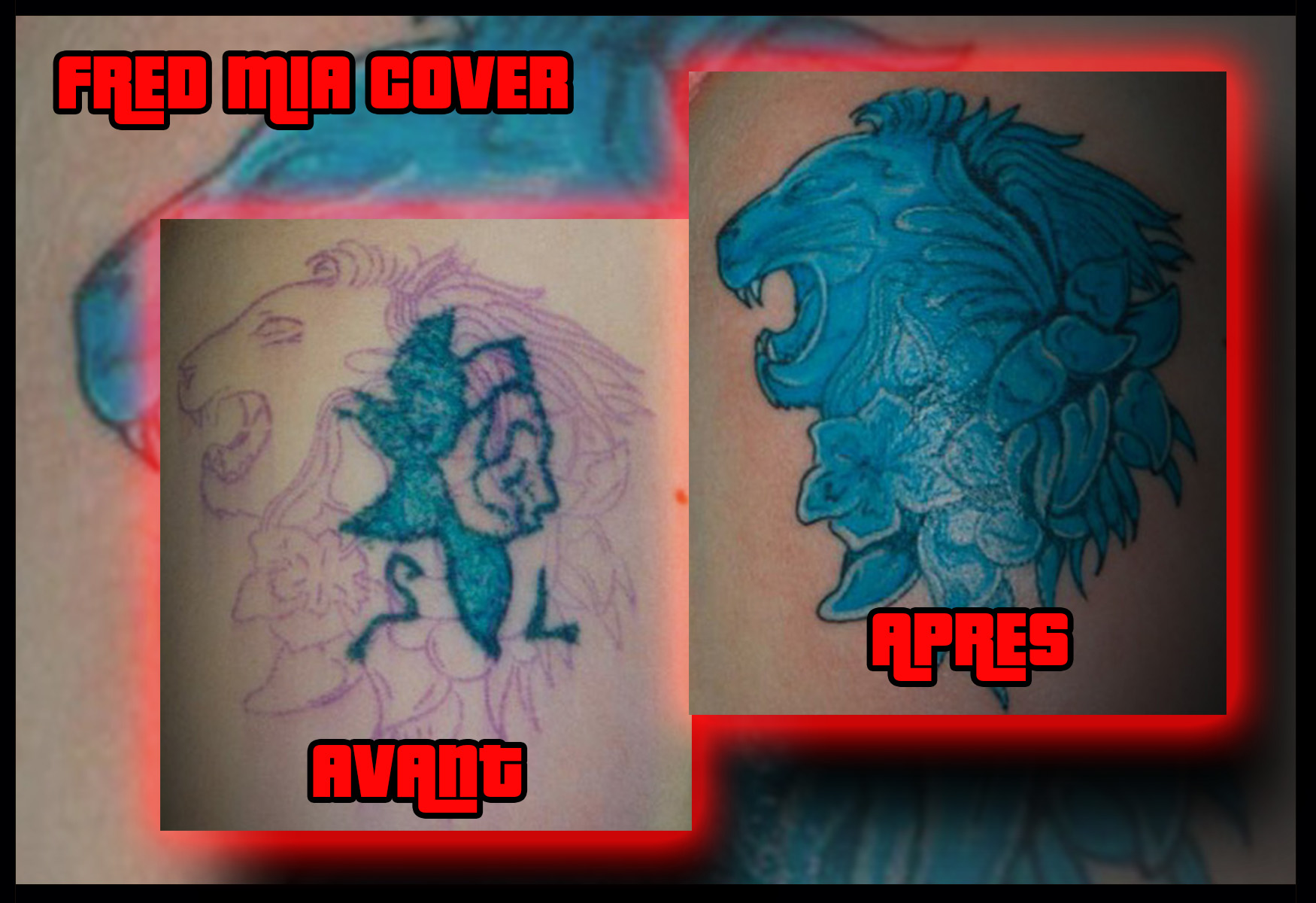 Cover-lion